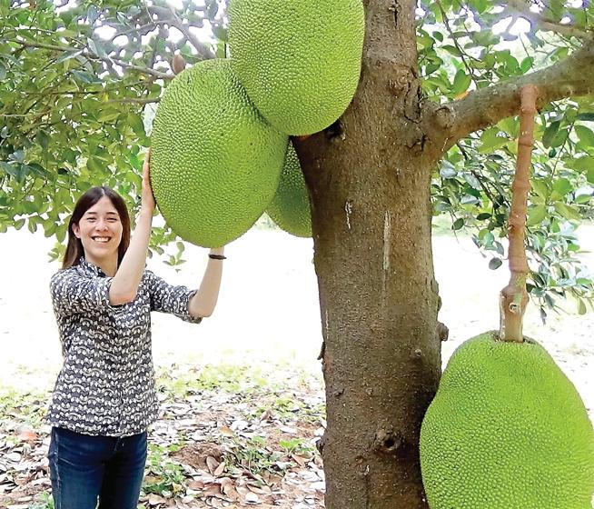 Annie Ryu, founder and CEO of The Jackfruit Company